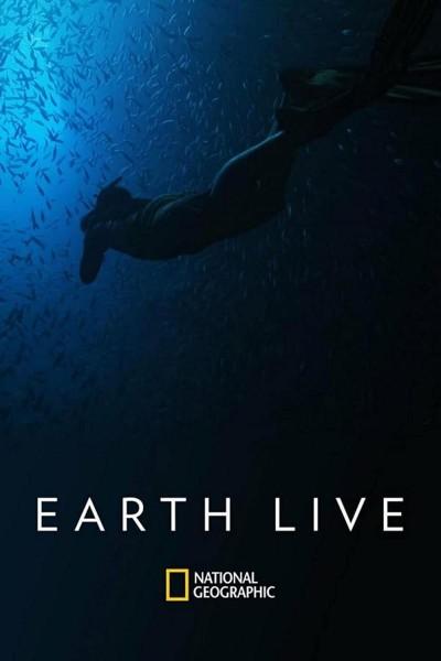Caratula, cartel, poster o portada de Naturaleza en directo