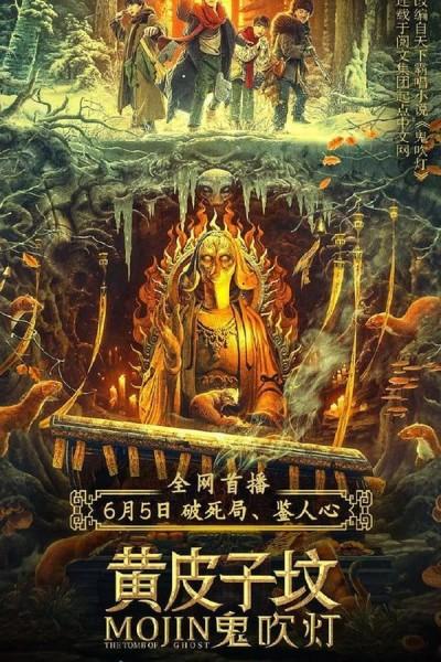 Caratula, cartel, poster o portada de Mojin: The Tomb of Ghost