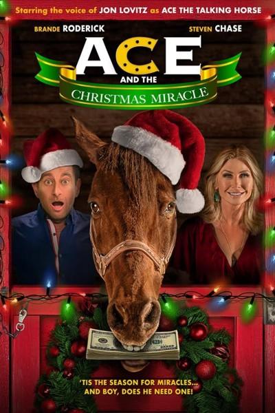 Caratula, cartel, poster o portada de Ace and the Christmas Miracle