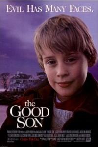 Caratula, cartel, poster o portada de El buen hijo