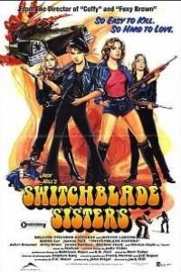 Caratula, cartel, poster o portada de The Warriors 2: Las navajeras (Switchblade Sisters)