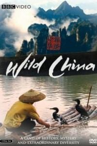 Caratula, cartel, poster o portada de China salvaje