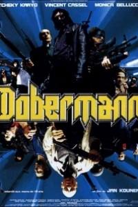 Caratula, cartel, poster o portada de Dobermann