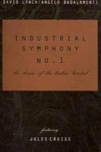 Caratula, cartel, poster o portada de Industrial Symphony No. 1