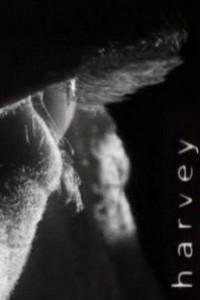 Caratula, cartel, poster o portada de Harvey