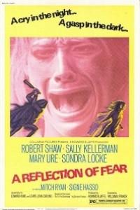 Caratula, cartel, poster o portada de Un reflejo del miedo