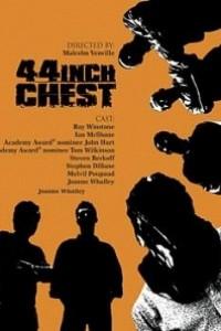 Caratula, cartel, poster o portada de 44 Inch Chest (La medida de la venganza)