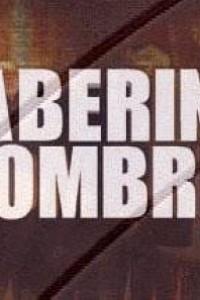 Caratula, cartel, poster o portada de Laberint d\'ombres
