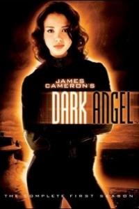 Caratula, cartel, poster o portada de Dark Angel