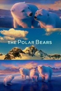 Caratula, cartel, poster o portada de The Polar Bears