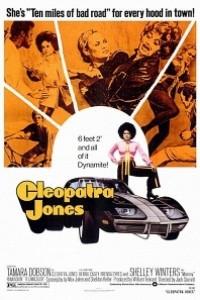 Caratula, cartel, poster o portada de Cleopatra Jones