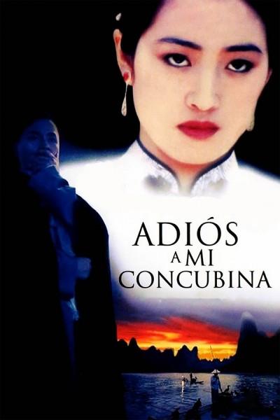 Caratula, cartel, poster o portada de Adiós a mi concubina