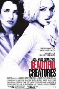 Caratula, cartel, poster o portada de Criaturas hermosas