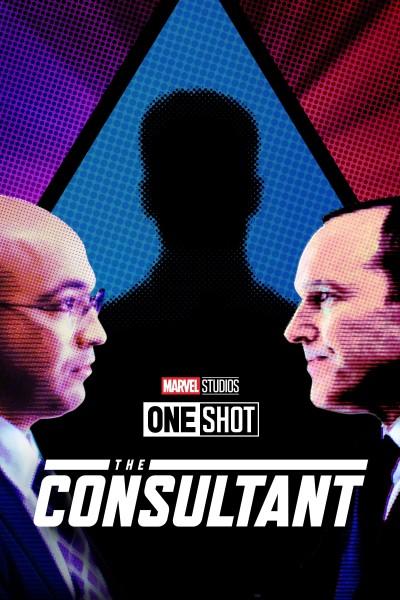 Caratula, cartel, poster o portada de Marvel de un vistazo: El consultor