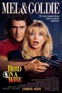 Caratula, cartel, poster o portada de Dos pájaros a tiro
