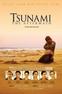 Caratula, cartel, poster o portada de Tsunami: El día después