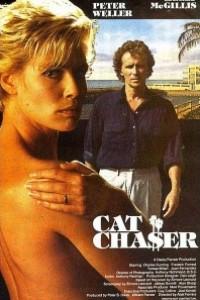 Caratula, cartel, poster o portada de El cazador de gatos