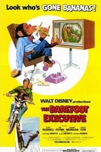 Caratula, cartel, poster o portada de Un ejecutivo muy mono