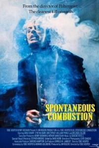 Caratula, cartel, poster o portada de Combustión espontánea
