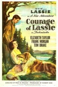 Caratula, cartel, poster o portada de El coraje de Lassie