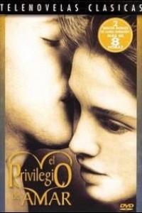 Caratula, cartel, poster o portada de El privilegio de amar