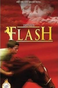 Caratula, cartel, poster o portada de Flash