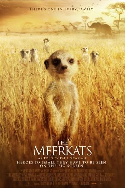 Caratula, cartel, poster o portada de The Meerkats
