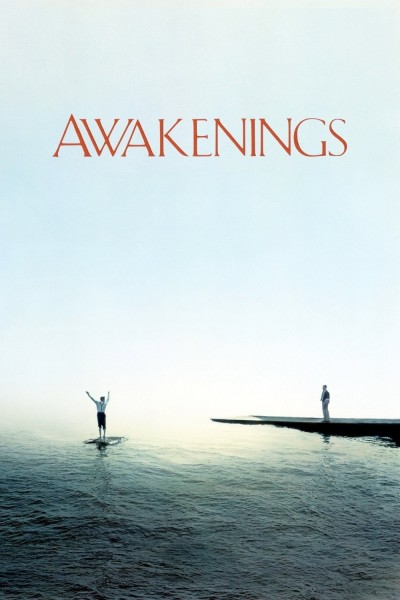 Caratula, cartel, poster o portada de Despertares