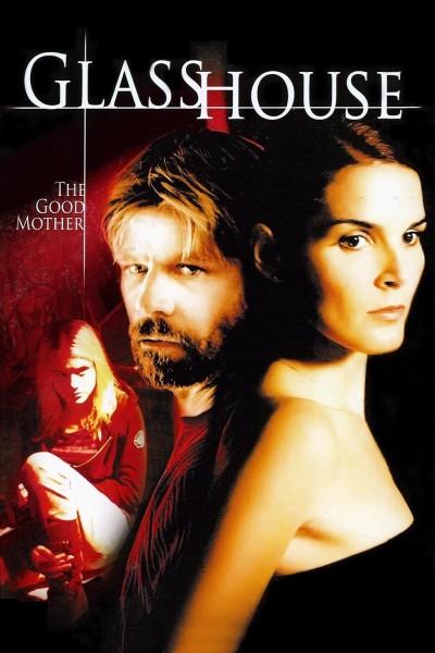 Caratula, cartel, poster o portada de La casa de cristal