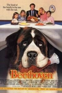 Caratula, cartel, poster o portada de Beethoven, uno más de la familia