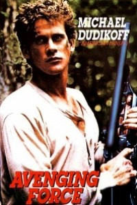 Caratula, cartel, poster o portada de La fuerza de la venganza