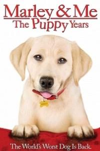 Caratula, cartel, poster o portada de Una pareja de tres: Los años cachorros