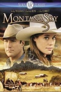 Caratula, cartel, poster o portada de Valle de sombras (Montana Sky)