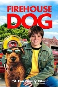 Caratula, cartel, poster o portada de Perro al rescate