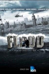 Caratula, cartel, poster o portada de Inundación