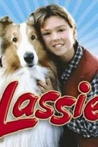 Caratula, cartel, poster o portada de Lassie