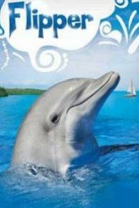 Caratula, cartel, poster o portada de Flipper