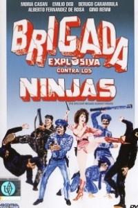 Caratula, cartel, poster o portada de Brigada explosiva contra los ninjas