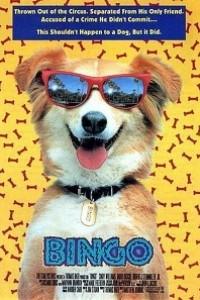 Caratula, cartel, poster o portada de Bingo