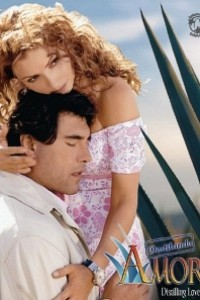 Caratula, cartel, poster o portada de Destilando amor
