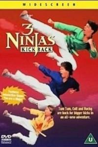 Caratula, cartel, poster o portada de 3 ninjas peleones (Tres pequeños ninjas 3)