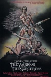 Caratula, cartel, poster o portada de El guerrero y la hechicera (Kain del planeta oscura)