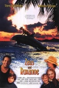 Caratula, cartel, poster o portada de Zeus y Roxanne