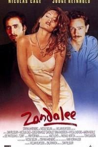 Caratula, cartel, poster o portada de Zandalee (En el límite del deseo)
