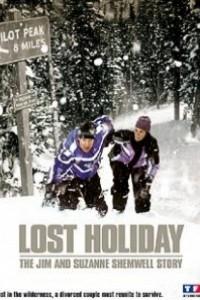 Caratula, cartel, poster o portada de Perdidos en la nieve