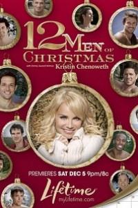 Caratula, cartel, poster o portada de Los 12 hombres del calendario (12 hombres para navidad)