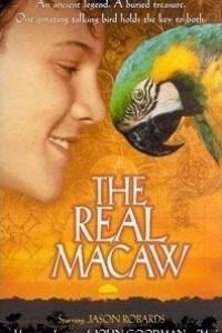 Caratula, cartel, poster o portada de El tesoro de la Isla de Coral (El auténtico Macaw)