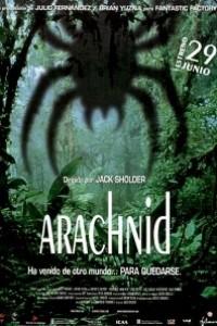 Caratula, cartel, poster o portada de Arachnid