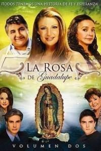 Caratula, cartel, poster o portada de La Rosa de Guadalupe