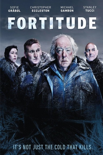 Caratula, cartel, poster o portada de Fortitude
